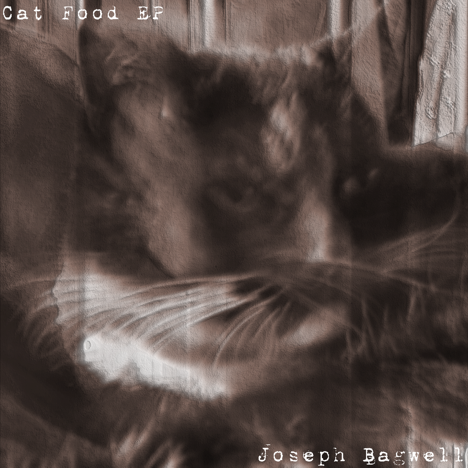Cat Food EP Artwork bigger