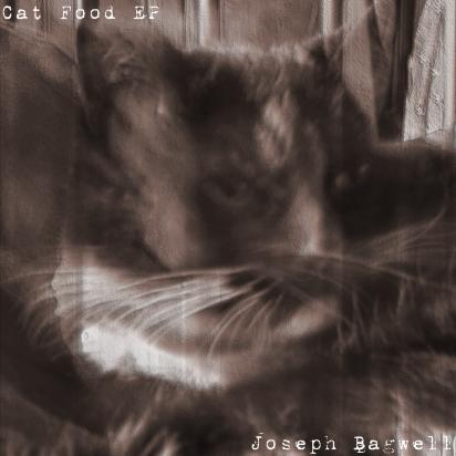 """Artwork for """"Cat Food"""""""